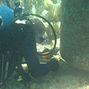 person under water with scuba gear