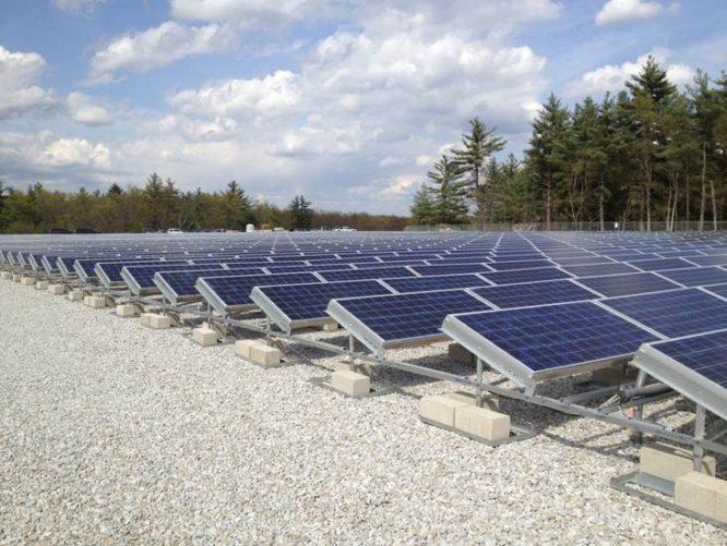 rows of solar panels