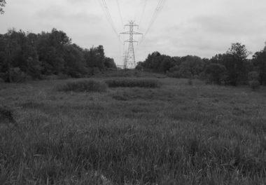 power lines above field of grass