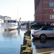 cars parked along water's edge with boat in water